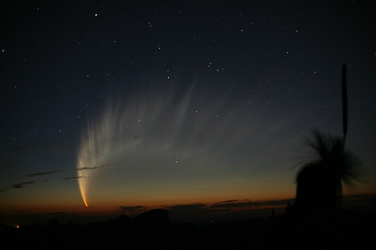 comet_mcnaught_big